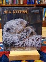 Sea otthers 2021