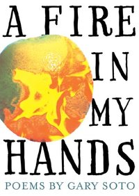 Fire in My Hands : Revised and Expanded Edition
