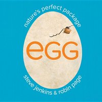 Egg : Nature's Perfect Package