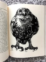 The Owl Papers (USED)