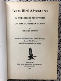 Texas Bird Adventures in the Chisos Mountains and on the Northern Plains